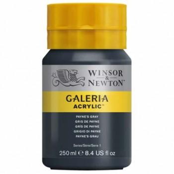 Winsor & Newton Galeria Acrylic Color 250ml WIN2137465