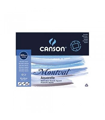 CANSON ACRYLIC PADS Csn 807358