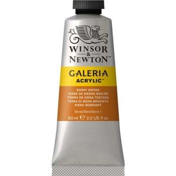 Winsor & Newton Galeria Acrylic Color 60ml WIN2120074